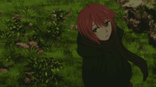 Chise out in a field.