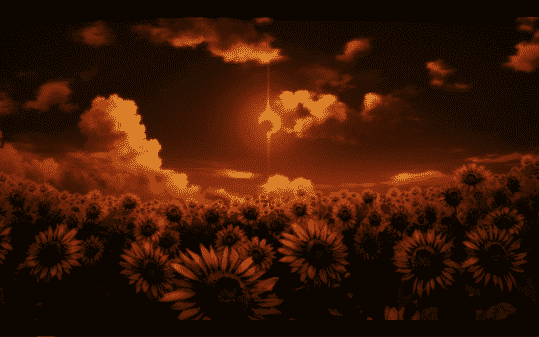 A field of flowers and an eclipse.