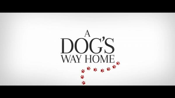 A Dog's Way Home – Title Card