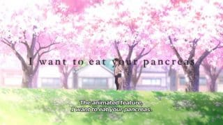 I Want to Eat Your Pancreas - Alternate Title Card