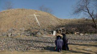 Blanca and Pray Tell at Hart Island.