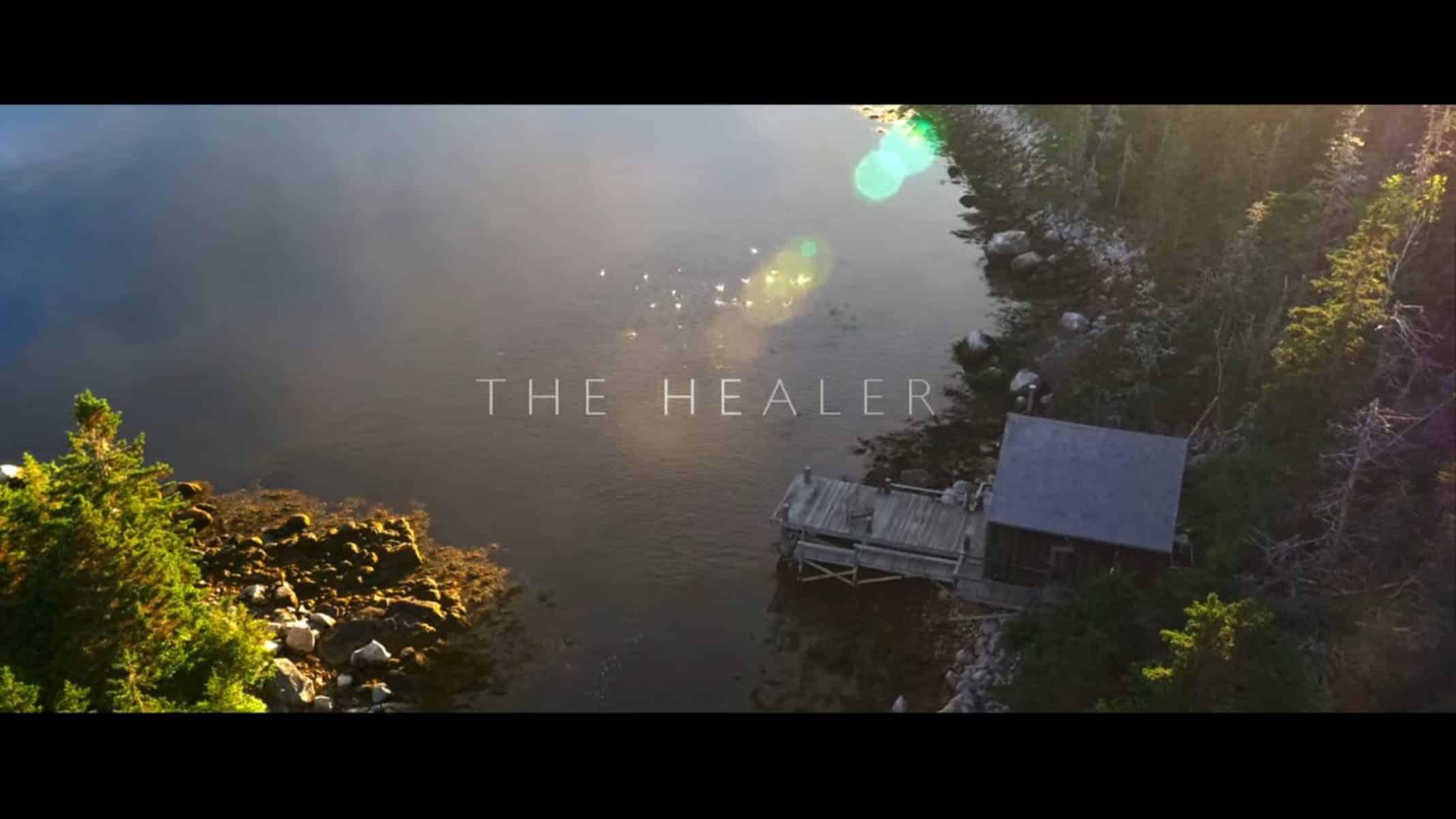 Title Card - The Healer (2017)
