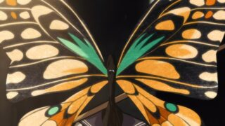 Butterfly Wonder Killer revealing their face